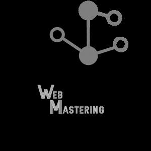 web-mastering.com